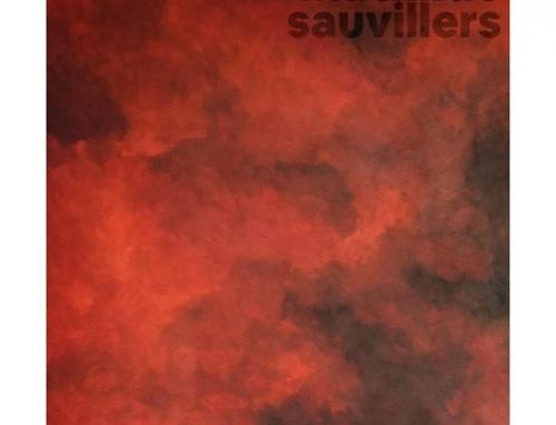 Exposition : Contemplations – par Mathilde Sauvillers – 11/01 au 25/01